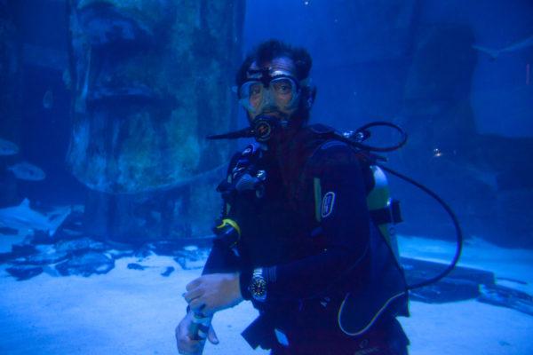 Certina DS Action Diver Sea Turtle Conservancy Special Edition Sea Life Aquarium London presentation